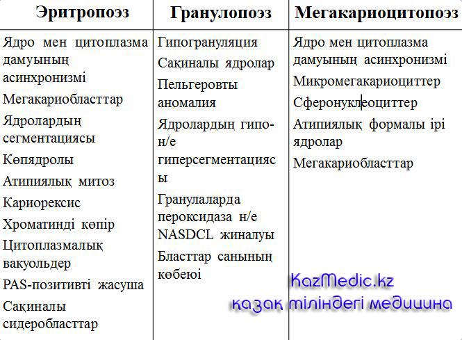 эритропоэз гранулопоэз қазақша