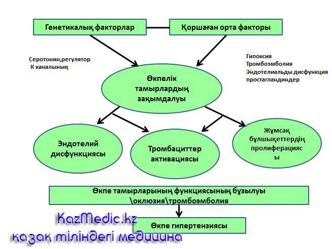 өкпелік гипертензия