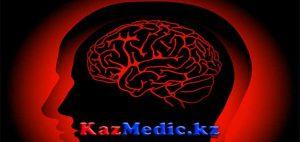 Менингиальды синдроммен жүретін ауруларды ажырату диагностикасы