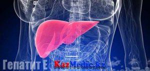 Вирусты гепатит Е. Жұғу жолдары, клиникасы, диагностикасы