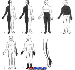 Сезімталдықтың күрделі түрлерін зерттеу