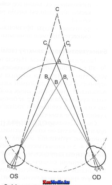 Бинокулярлы көру механизімі