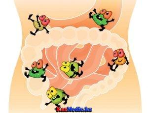 Адам ағзасының қалыпты микрофлорасы. Дисбактериоз