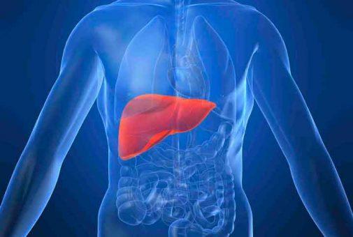 созылмалы гепатит