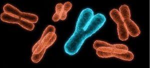 Хромосомның ххy синдромы