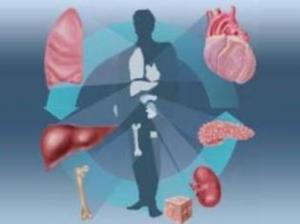 Трансплантация иммунологиясы