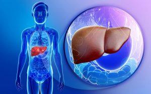 Бауыр трансплантациясы