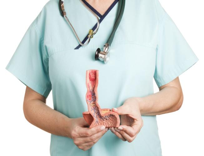 Өңештің анатомиясы және физиологиясы