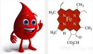Гемоглобиннің құрылымының және түзілуінің мүкістіктері